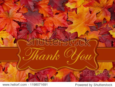 Thank You message on orange and red fall leaves on a banner