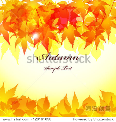 Autumn Leaves background / Vector autumn Leaves background / Realistic autumn maple Leaves background.