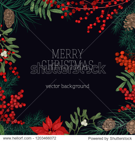 Square frame or border made of branches and cones of coniferous trees  poinsettia leaves  holly and mistletoe berries hand drawn on black background and Merry Christmas wish. Vector illustration.