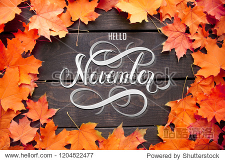 Hello November hand lettering inscription with orange and red maple leaves frame on old wooden background. Autumn decor  fall mood.