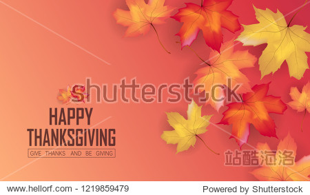 Thanksgiving design background with Colorful  falling maple  leaves. Autumn seasonal lettering. for card poster web banner template vector illustration