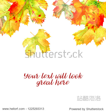 Background with autumn golden orange grape vine leaves isolated on white  falling from above. Watercolor illustration