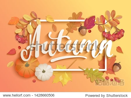 Gold autumn banner. Invitation to harvest season. Poster for fall Harvest Festival. Background with square frame  maple leaves  rowan  pumpkins and acorns. Template for poster design  prints  flyers.