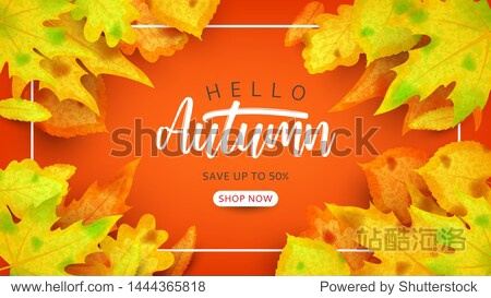 Autumn sale promo background. Vector illustration with autumn leaves of rowan  maple  linden and oak on orange background. Seasonal discount offer.