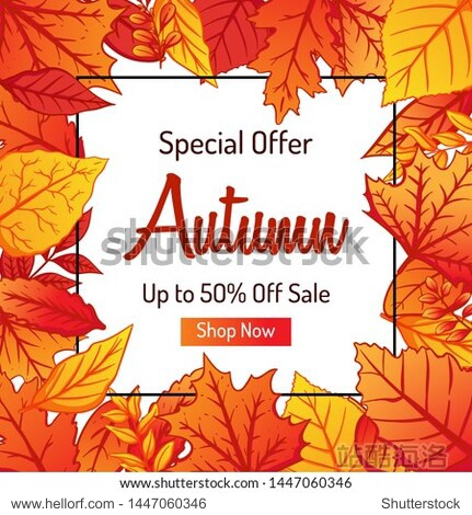 Colorful Autumn Leaves Background for Shopping Sale or Promo