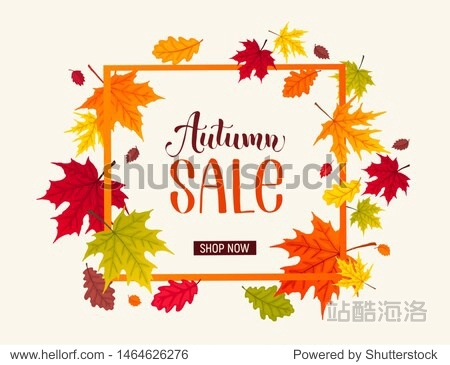 Autumn sale banner with bright colorful leaves. Autumn foliage vector illustration. Fall discount poster design. Square frame composition.
