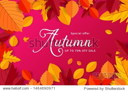 Autumn sale background layout decorate with leaves for shopping sale or promo poster and frame leaflet or web banner.