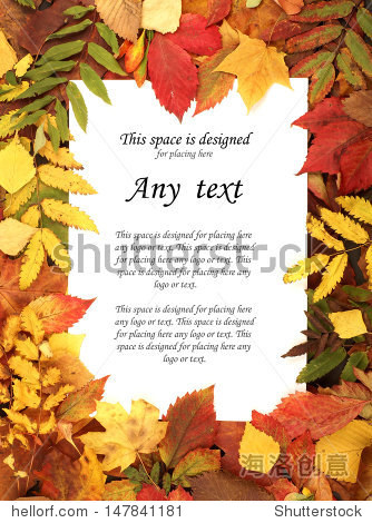 Colorful autumn template made of foliage and the piece of blank paper