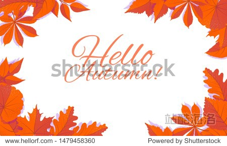 Autumn corner concept for frames with falling leaves on white background. Hello autumn vector isolated illustration.