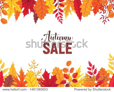 Bright autumn leaves panorama composition isolated on white background. Autumn sale banner vector illustration.