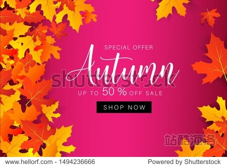 Autumn sale with leaves. Geometrical template background for cover  poster  card  label  banner holiday design. Discount offer 50%. Abstract business fall leaves. Vector illustration
