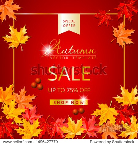Autumn sale special offer social media post. Square template red background with maple leaves