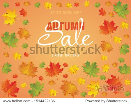 Autumn sale poster of discount promo web banner for autumnal seasonal shopping of maple leaf
