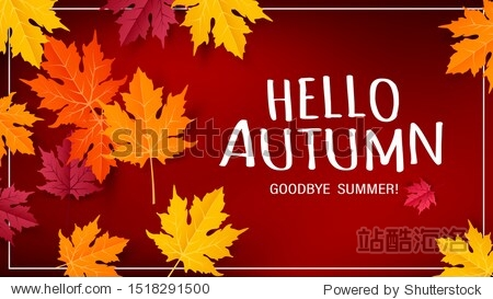 Hello autumn vector background design with autumn typography and maple leaves in textured background for fall season greetings design. Vector illustration.