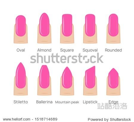Nail shapes manicure vector art. Fingernail shape french form design fashion salon.