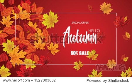 Autumn spesial offer sale on background with diferrent leaves. Design for banner  post  card  label