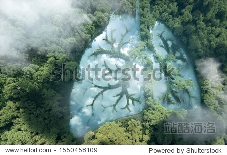Green lungs of planet Earth. 3d rendering of a clean lake in a shape of lungs in the middle of  virgin forest. Concept of nature and rainforest protection  nature breathing and natural co2 reduction.