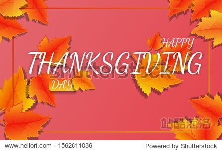 Thanksgiving holiday banner with congratulation text. Autumn tree leaves on yellow background. Autumnal design for fall season poster  thanksgiving greeting card  vector illustration