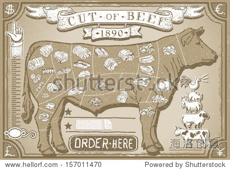 Butchery Infographics. Vintage Graphic Scheme for Butcher Shop Beef Butchery Cow Meat Diagram Chalk Illustration.