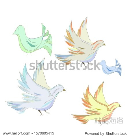 Pigeons with different colors of plumage