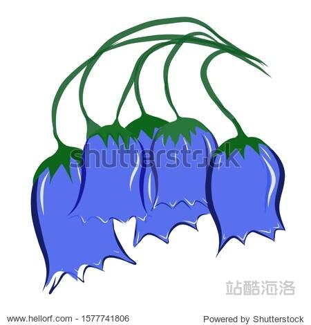 Bouquet of blue wildflowers bluebells