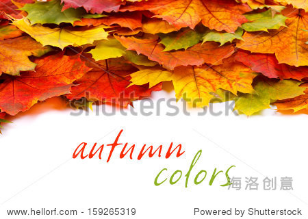 Colorful autumn leaves border with place for your text