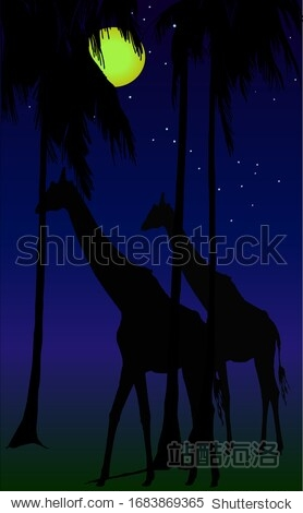 Sketch  two giraffes at night go among palm trees on a background of the starry sky. Constellation Giraffe. Suitable for cards  invitations  books  prints  wallpapers