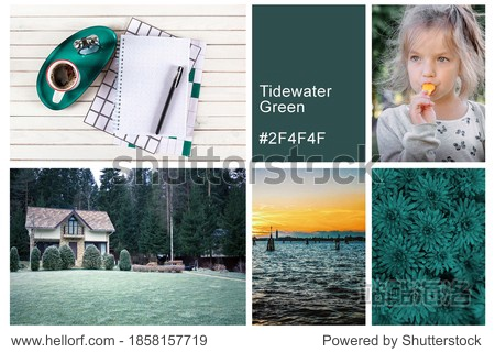 Collage set made of photos toning in Tidewater Green color. Trendy creative design in color of 2021