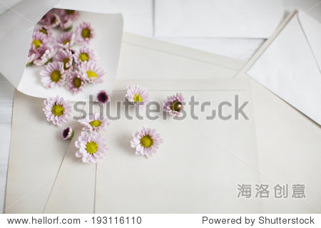 the image of flower petals