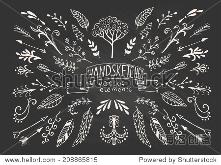 Hand Drawn vintage floral elements. Set of flowers  arrows  icons and decorative elements.