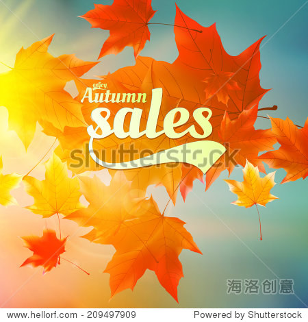 Autumn sale realistic Leaves typography poster. EPS10