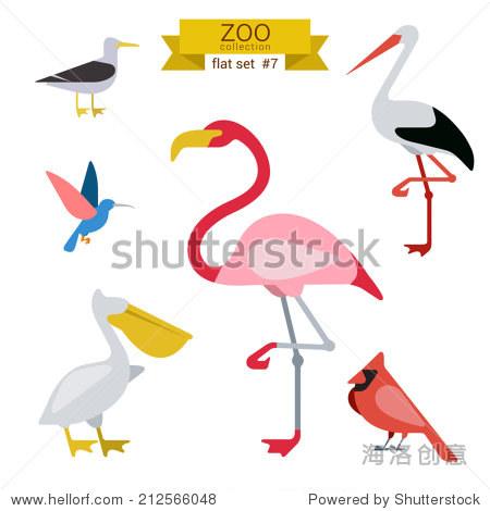 Flat design vector birds icon set. Seagull  hummingbird  flamingo  stork  pelicans. Flat zoo children cartoon collection.