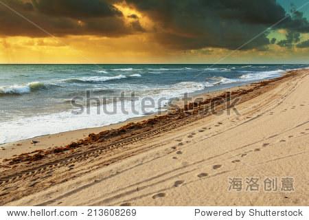 amazing ocean beach view with skies