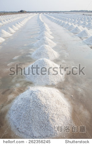 vertical form of Heap of sea salt in original salt produce farm make from natural ocean salty water preparing for last process before sent it to industry consumer