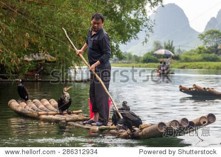 YANGSHUO, CHINA - MAY 01, 2015: Chinese man fishing with cormorants birds in Yulong river in Yangshuo, Guangxi region. Traditional fishing use trained cormorants to fish.