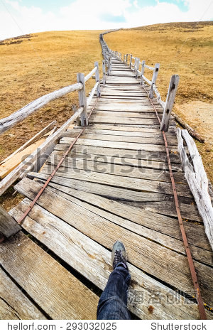 Long walkway at Yak Meadow : Jade Dragon Snow Mountain - Lijiang