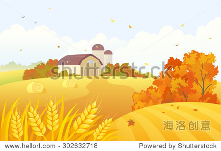 Vector cartoon illustration of a beautiful fall farm scene with wheat fields and barns