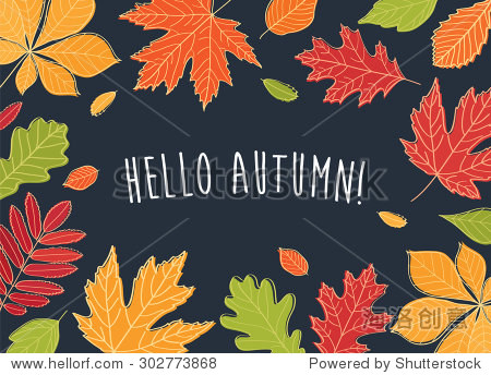 Hello autumn! Autumn leaves are drawn on the black chalkboard. Sketch  design elements. Vector illustration.