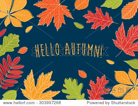 Hello autumn! Autumn leaves are drawn on the chalkboard. Sketch  design elements.