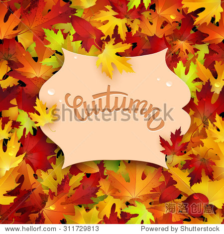 Vector illustration with colorful autumn leaves  card template  natural backdrop
