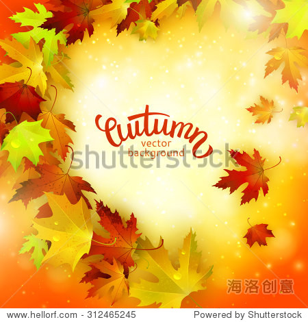 Vector background with colorful autumn leaves  card template  natural backdrop