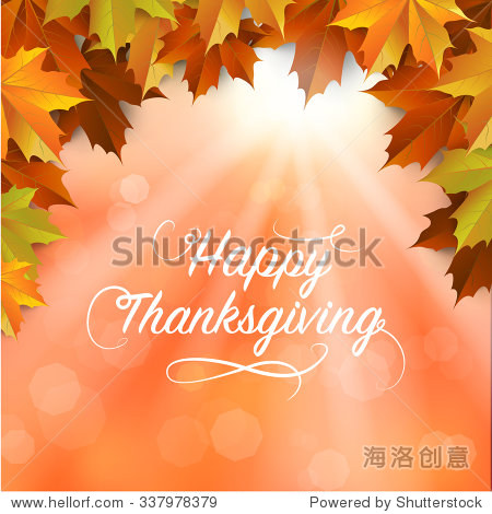 autumn   Maple leaves Background  Thanksgiving Typography  vector Illustration