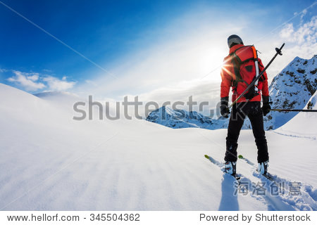 Skiing: rear view of a skier in powder snow. Italian Alps  Europe.