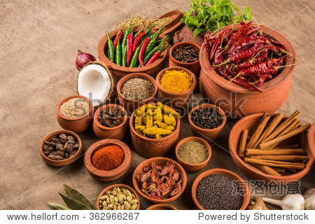 Indian essential spices in terracotta pots arranged over textured background  selective focus
