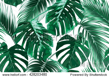 Tropical palm leaves  jungle leaves seamless vector floral pattern background
