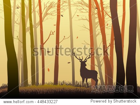 Silhouette of a deer in the woods during autumn season