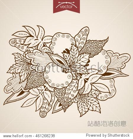 Engraving vintage hand drawn vector leaves bouquet. Pencil Sketch oak maple leaf herbarium illustration.