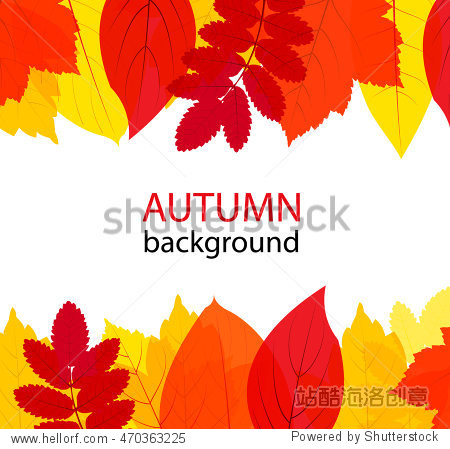 Autumn or Fall background with transparent yellow and red colorful leaves set  vector illustration