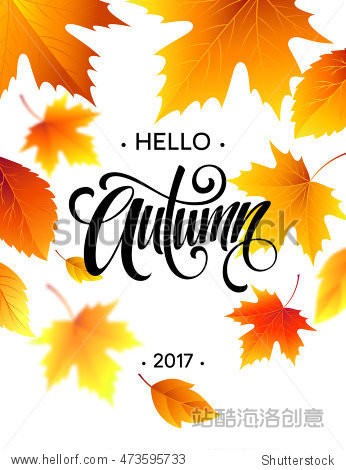 Hello  Autumn. Trendy calligraphy. Background of Fall leaves. Concept leaflet  flyer  poster advertising. Vector illustration EPS10