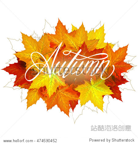 Beautiful hand drawn autumn foliage vector sale label  banner template. Lettering design. Fall leaf. Vector illustration EPS10